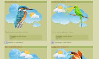 Birdrama - Las exposiciones ornitologicas